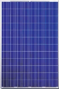 Picture of Canadian Solar CS6P-230P Polycrystalline Panel