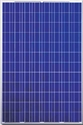 Picture of Canadian Solar CS6P-230P Polycrystalline Panels in Pallet