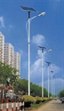 Picture for category Solar Street Lights & Parking Lot Lighting