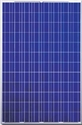 Picture of Canadian Solar CS6P-225P 225 Watt Polycrystalline Panel
