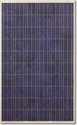 Picture of Canadian Solar CS6P-240PX NewEdge Polycrystalline Panel in Pallet