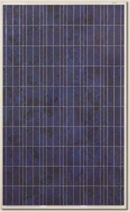 Picture of Canadian Solar CS6P-250PX NewEdge Polycrystalline Panel in Pallet