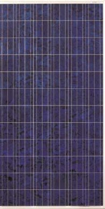 Picture of Canadian Solar CS6X-260P 260W Solar Panels in Pallet